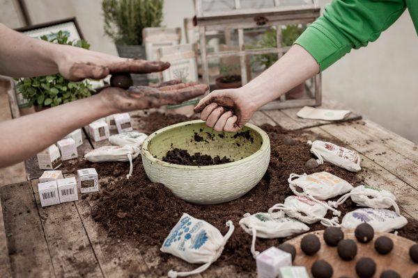 urban-farming-8